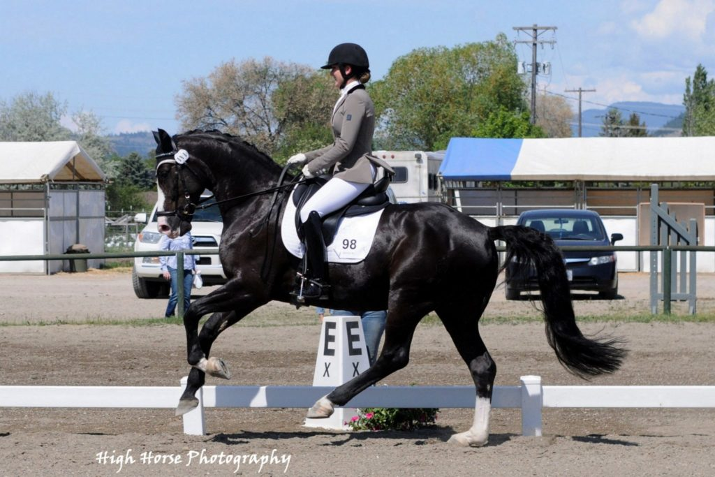 2015 Dressage Award Winner