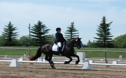 Robinson LLP Award of Excellence of Dressage